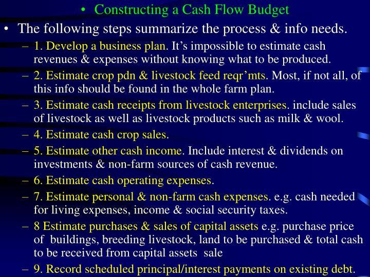 Constructing a Cash Flow Budget