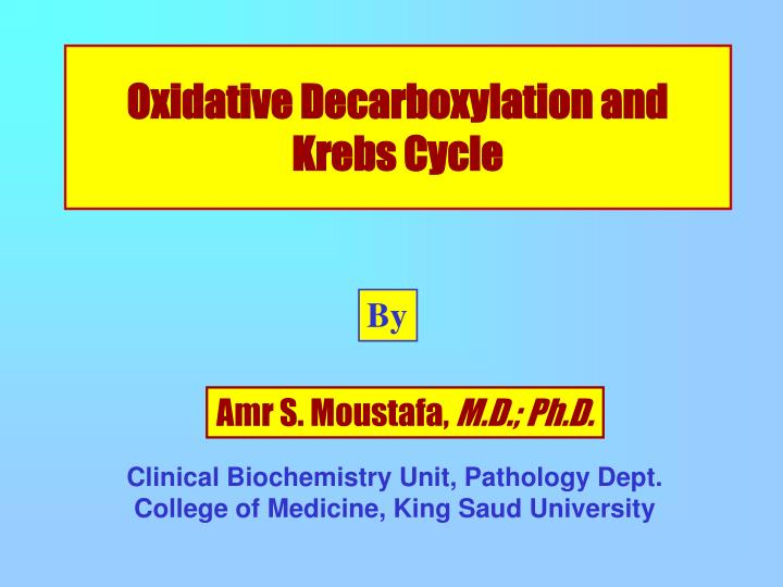 Oxidative Decarboxylation and Krebs Cycle