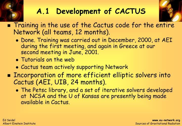a 1 development of cactus