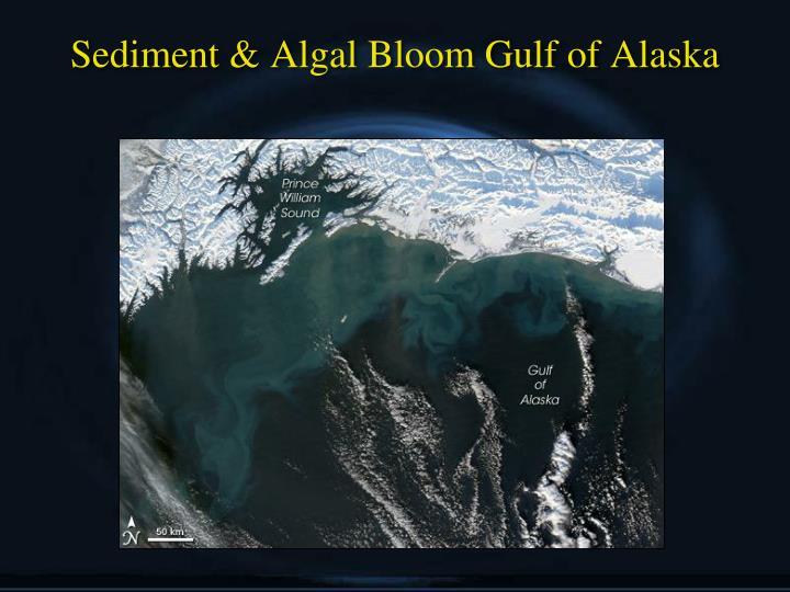 Sediment & Algal Bloom Gulf of Alaska