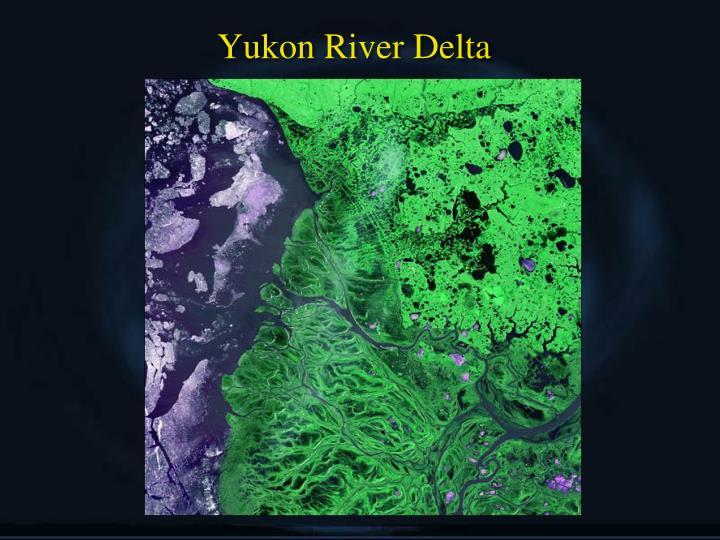 Yukon River Delta