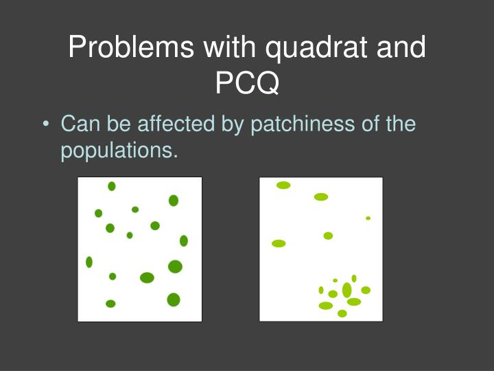 Problems with quadrat and PCQ