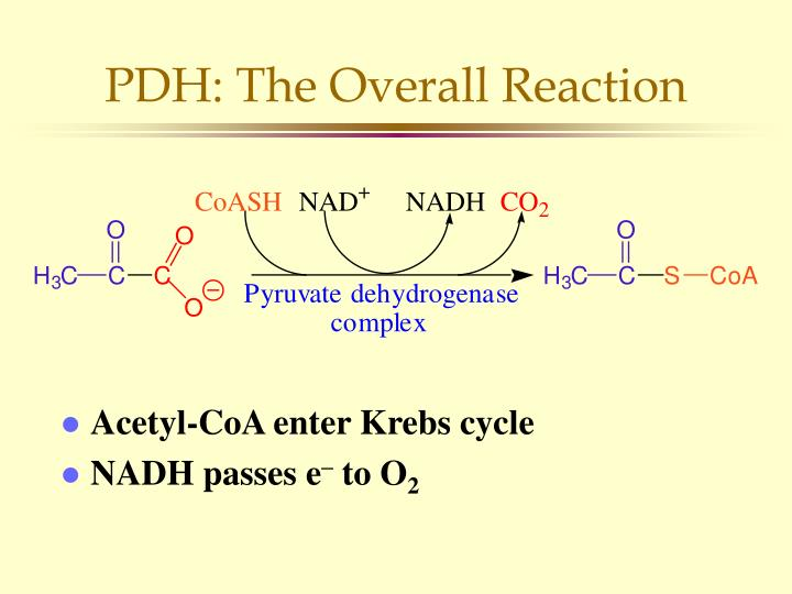 PDH: The Overall Reaction