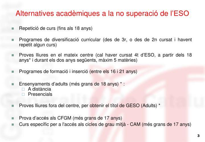 Alternatives acadèmiques a la no superació de