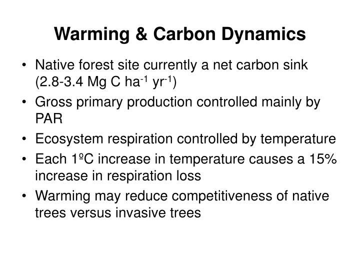 Warming & Carbon Dynamics