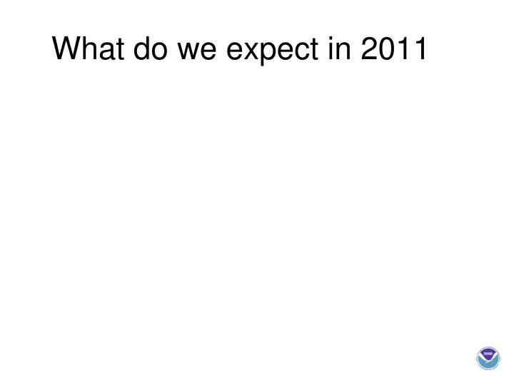 What do we expect in 2011