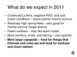 what do we expect in 20115
