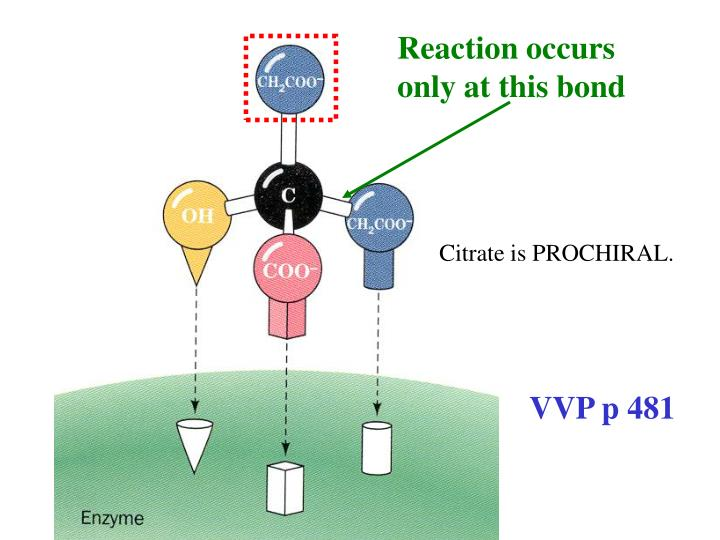 Reaction occurs only at this bond