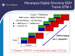 hierarquia digital s ncrona sdh trama stm 1