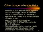 other datagram header fields