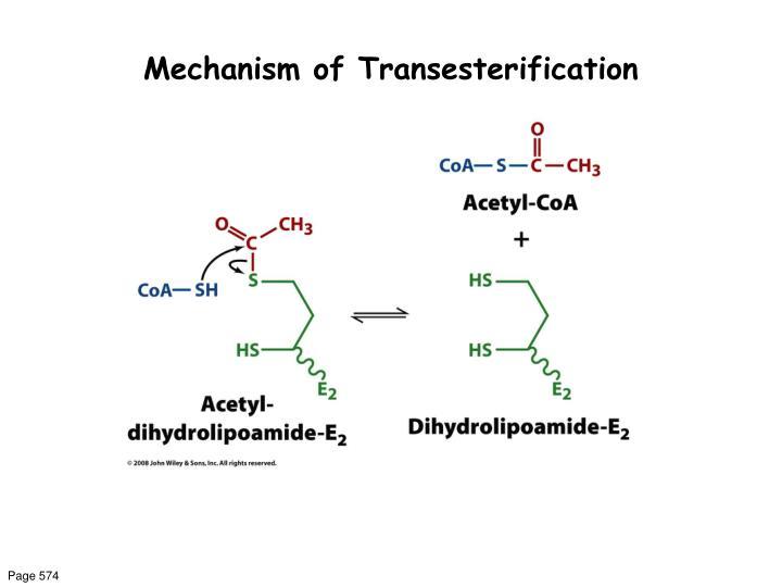 Mechanism of Transesterification