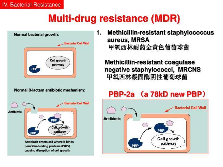 IV. Bacterial Resistance