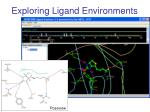 exploring ligand environments