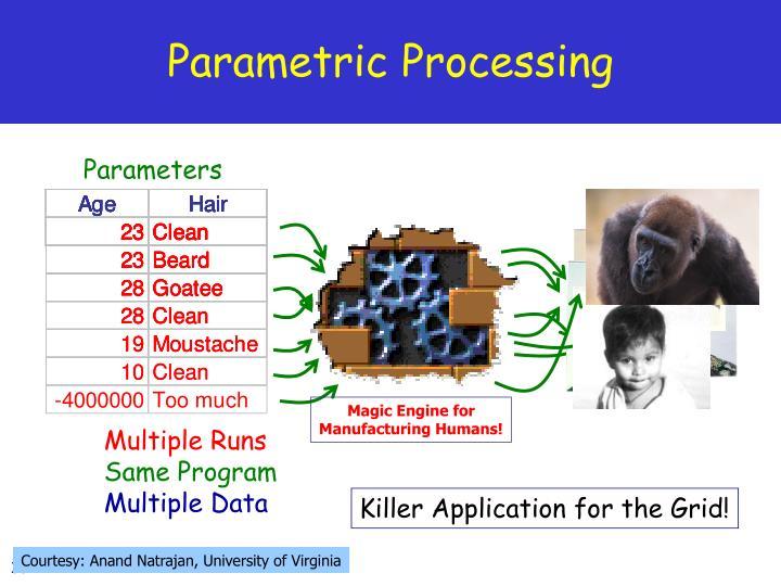Parametric Processing