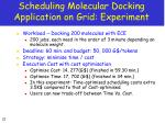 scheduling molecular docking application on grid experiment