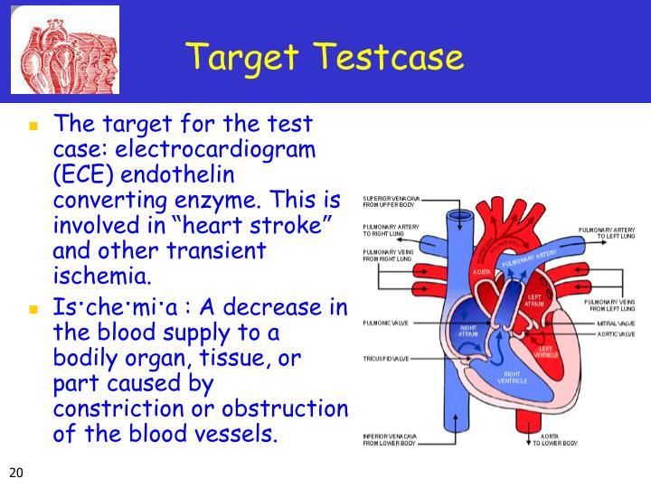 Target Testcase