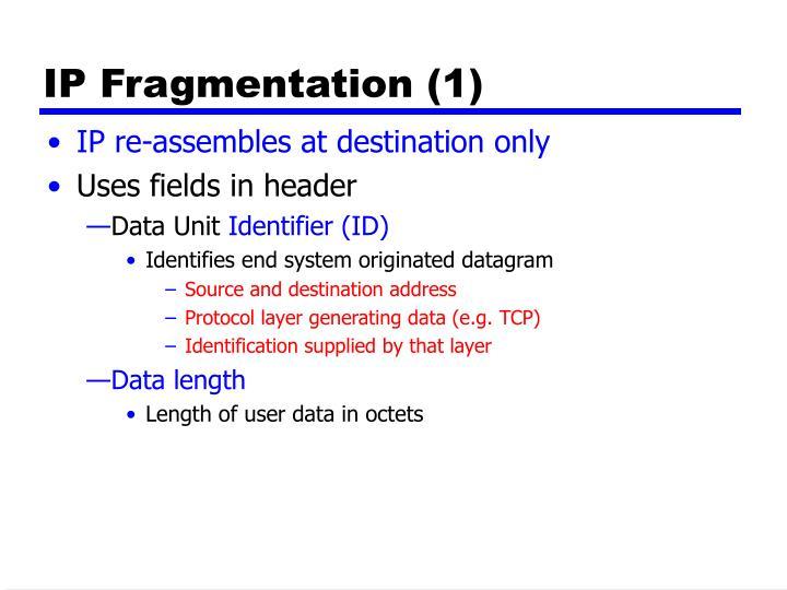 IP Fragmentation (1)