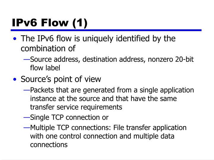 IPv6 Flow (1)