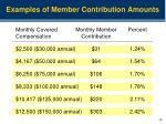 examples of member contribution amounts
