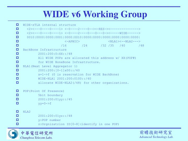 WIDE v6 Working Group