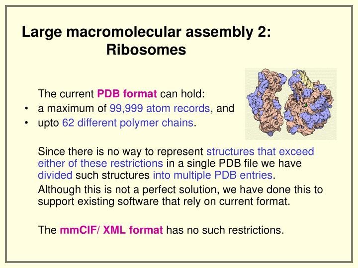 Large macromolecular assembly 2: Ribosomes