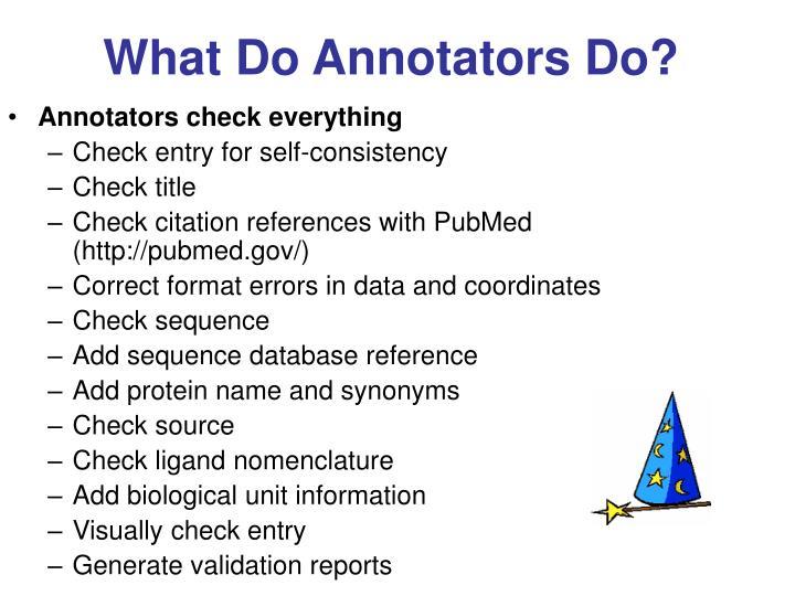 What Do Annotators Do?
