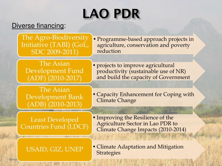 The Agro-Biodiversity Initiative (TABI) (