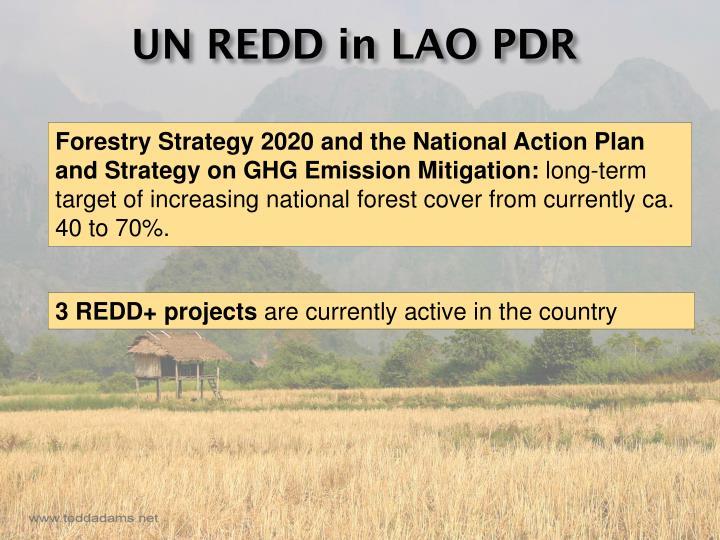 UN REDD in LAO PDR