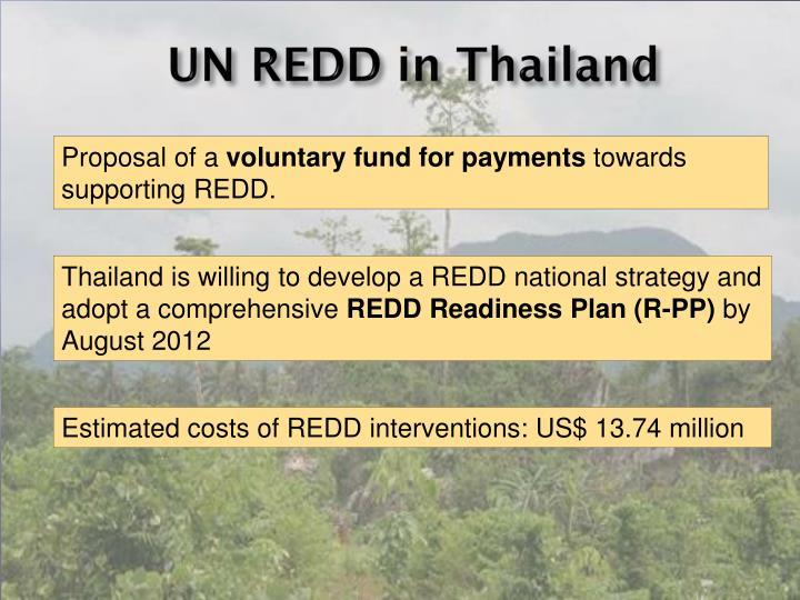 UN REDD in Thailand
