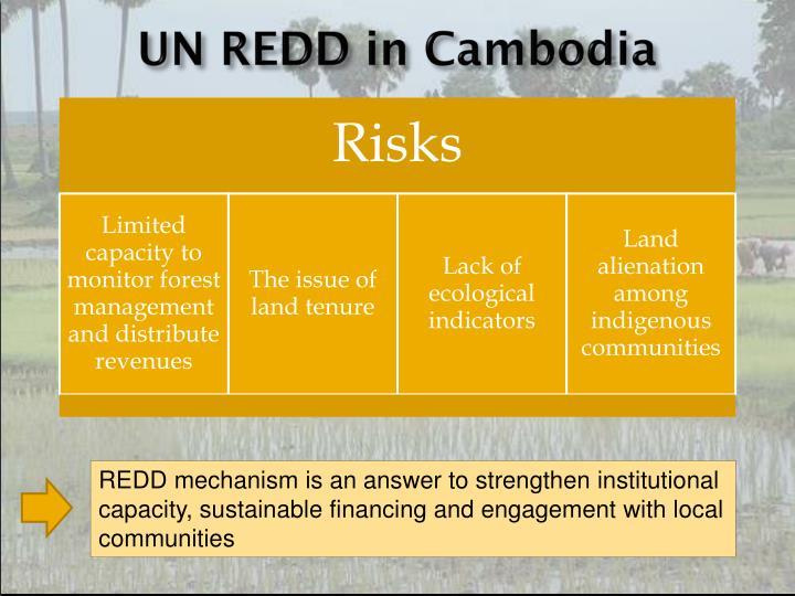 UN REDD in Cambodia