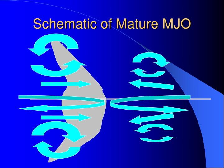 Schematic of Mature MJO