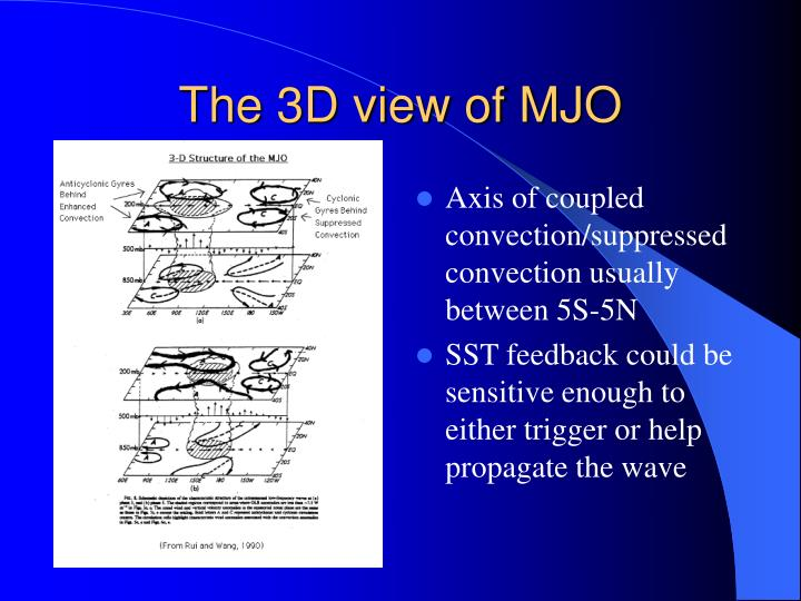 The 3D view of MJO