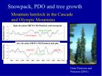 snowpack pdo and tree growth