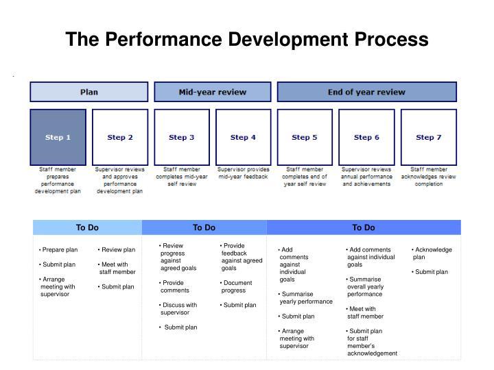 The Performance Development Process