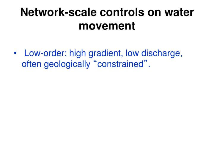 Network-scale controls on water movement