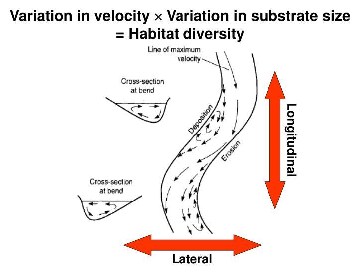 Variation in velocity