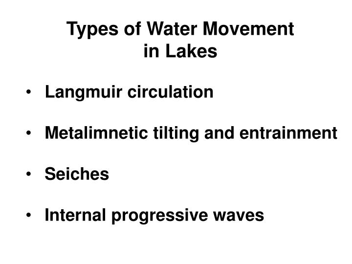Types of Water Movement in Lakes
