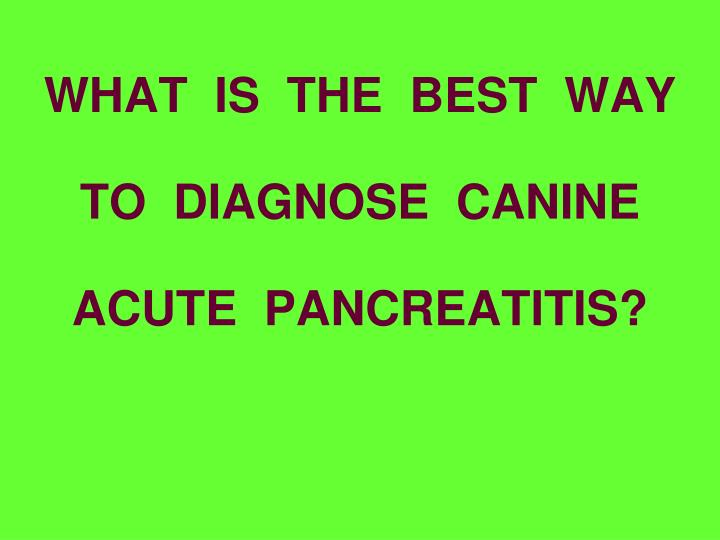 WHAT  IS  THE  BEST  WAY  TO  DIAGNOSE  CANINE  ACUTE  PANCREATITIS?