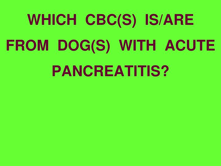 WHICH  CBC(S)  IS/ARE  FROM  DOG(S)  WITH  ACUTE PANCREATITIS?
