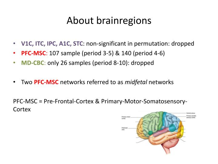 About brainregions
