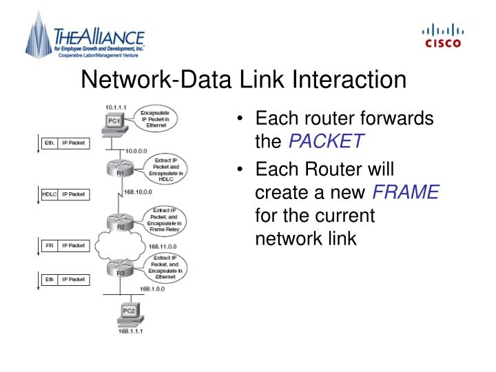 Network-Data Link Interaction