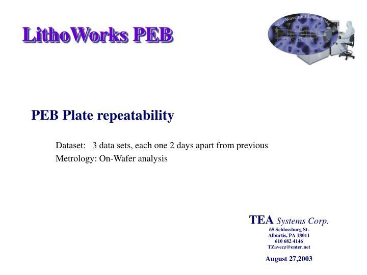 LithoWorks PEB