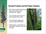 ancient forests and the paper industry