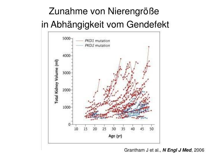 Zunahme von Nierengröße