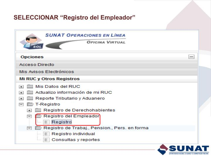 """SELECCIONAR """"Registro del Empleador"""""""