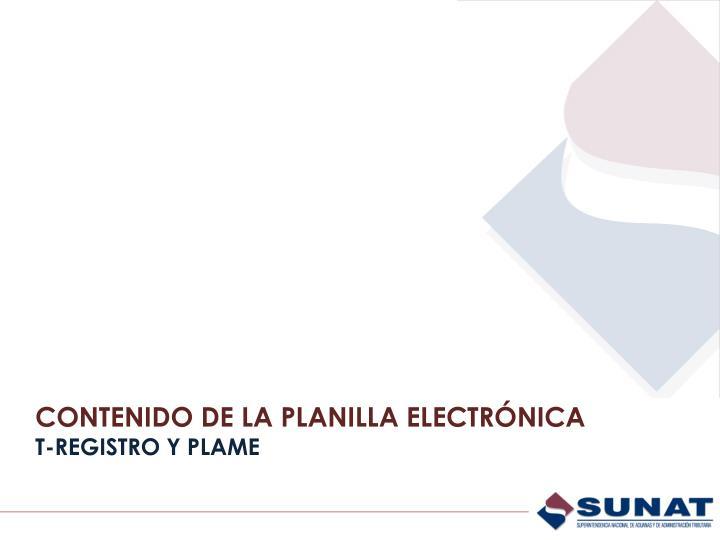 CONTENIDO DE LA PLANILLA ELECTRÓNICA