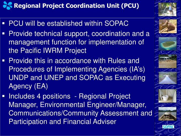 Regional Project Coordination Unit (PCU)