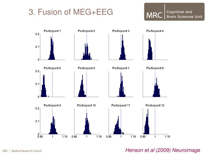 3. Fusion of MEG+EEG