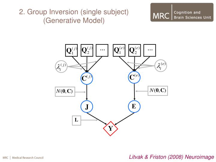 2. Group Inversion (single subject)
