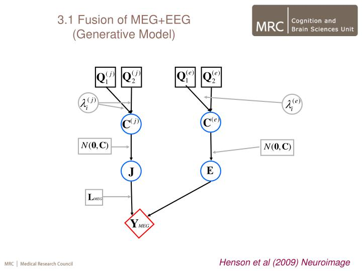 3.1 Fusion of MEG+EEG